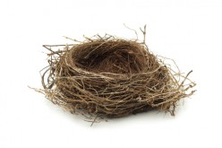 Helen Dean appointed as new NEST CEO