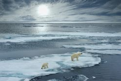 XPS survey reveals pension fund manager attitude to climate change